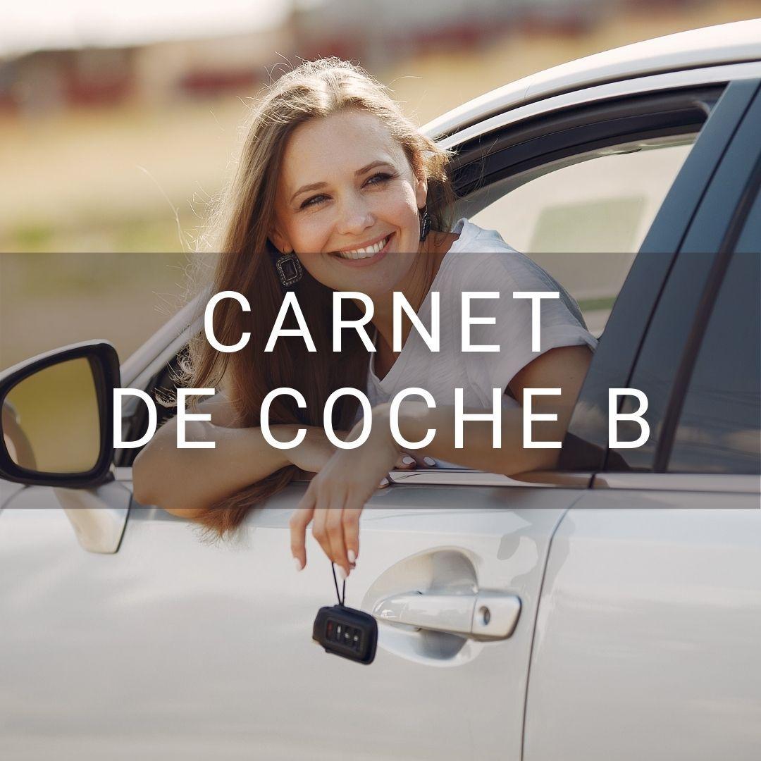 Carnet de coche permiso B